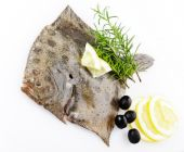 Raw Turbot With Ingredients