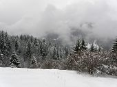 Winter landscape in Bavarian Alps