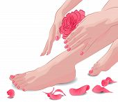 Female feet and hands with pink rose and petals
