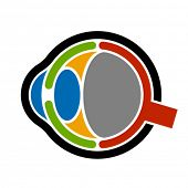 vector anatomy human eye icon