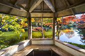 stock photo of gazebo  - A burst of fall color with pond reflections as viewed from inside a gazebo on a late afternoon - JPG