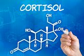 Hand with pen drawing the chemical formula of cortisol