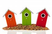 colorful bird houses and seed isolated over white background