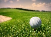 stock photo of golf bag  - Golf ball in grass - JPG