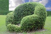 Topiary Chair