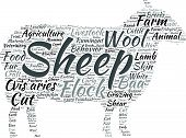 Sheep shaped vector tag cloud illustration