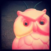 Instagram style image of a plastic retro owl patio light