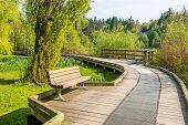 Trail tand bench in Deer Lake Park, Vancouver, Canada.