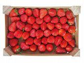 Strawberries Fruits