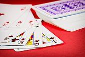 Dealt Cards