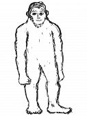 foto of bigfoot  - hand drawn sketch cartoon illustration of bigfoot - JPG