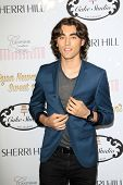 LOS ANGELES - APR 27:  Blake Michael at the Ryan Newman's Glitz and Glam Sweet 16 birthday party at Emerson Theater on April 27, 2014 in Los Angeles, CA