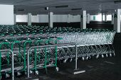 Rows of shopping carts in abandoned car park