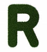 Grass alphabet-R