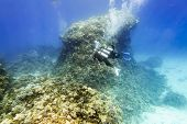 Divers In Gear Swim Under Water Amid Coral Reef