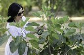 Botanist Checking The Growth Of Figs
