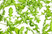top view of arugula leaves on white background