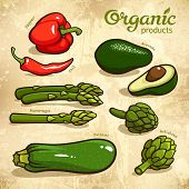 Vegetables Vector Set 4