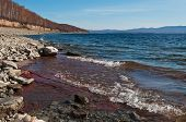 Rocky Shore Of The Lake In Late Autumn