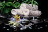 Spa Setting Of Passiflora Flower, Branches, Stacked Towels, Zen Basalt Stones With Drops And Pearl B