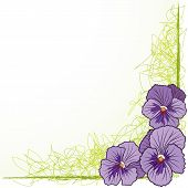 Border With  Violet Pansies