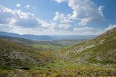 Spring Valley At Gredos Mountains