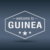 Welcome To Guinea Hexagonal White Vintage Label
