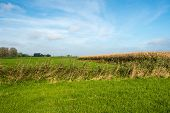 picture of zea  - Colorful rural landscape on a sunny day in autumn - JPG