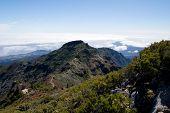 Pico ruivo mountain, Madeira