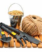 image of shoulder-blade  - Garden supplies wheat grains rake pot shovel isolated on white - JPG