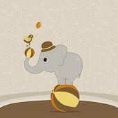 Cute Elephant On The Ball With A Bird
