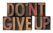Do Not Give Up Phrase In Wooden Type