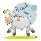 Illustration Of Cute Crazy Sheep