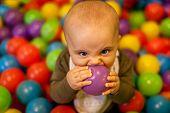 Little boy ball tasting