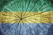 foto of sub-saharan  - Flag of Gabon on cracked wooden texture - JPG