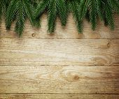 Christmas fir tree on wooden board background with copy space