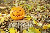 Pumpkin for holiday Halloween on old tree stump