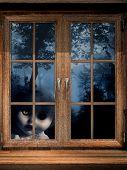 Dark series - doll ghost in misty forest