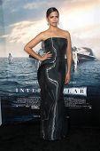 LOS ANGELES - OCT 26:  Camila Alves McConaughey at the