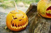 Pumpkins for holiday Halloween on old tree stump