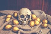 stock photo of human egg  - Human skull surrounded by golden easter egg on brown sack with dark brown wooden backgound - JPG
