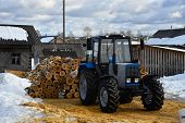 foto of skidder  - new tractor and birch logs stacked behind him - JPG