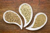 image of teardrop  - hemp seeds - JPG