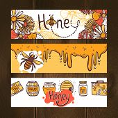 foto of flying-insect  - Honey hand drawn horizontal banner set with beehive honeycomb flying bee elements isolated vector illustration - JPG