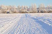 Multiple Use Recreation Trail during Alaska Winter