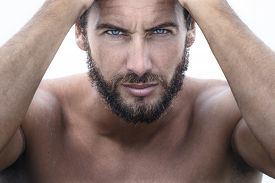 picture of macho man  - Close up Portrait of Confident Gorgeous Handsome Man looking at camera - JPG