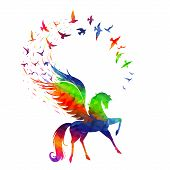 picture of winged-horse  - The concept of inspiration - JPG