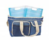image of freeze  - thermo bag and two freeze pack portable fridge for camping - JPG