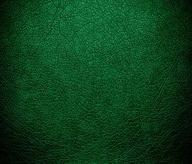 stock photo of dartmouth  - Dartmouth green leather texture or background for design - JPG