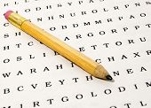 Word Search Puzzle with Pencil